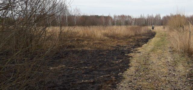 W dniu dzisiejszym strażacy ratownicy z OSP Majdan Królewski interweniowali 2 razy. Pierwsze zdarzenie to pożar nieużytków w Hucie Komorowskiej o 14:20 gdzie spłonęło około 20 arów nieużytków, Drugie zdarzenie […]