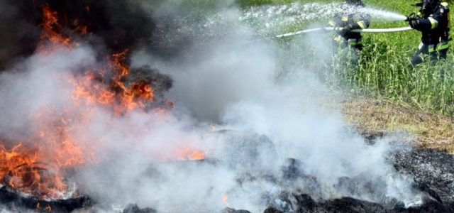 09.04.2018 Od początku roku podkarpaccy strażacy wyjeżdżali już do 517 pożarów traw na nieużytkach, polach i pastwiskach.Ogień pochłonął ponad 170 hektarów łąk, pól i nieużytków. W 2017 r. na Podkarpaciudoszło […]